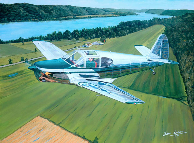 Aviation Art by Sam Lyons, Lee Bottom Bird