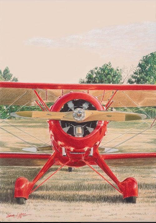Aviation Art by Sam Lyons, Red Bird