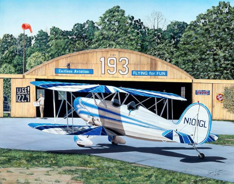 Aviation Art by Sam Lyons, Gone-Flying