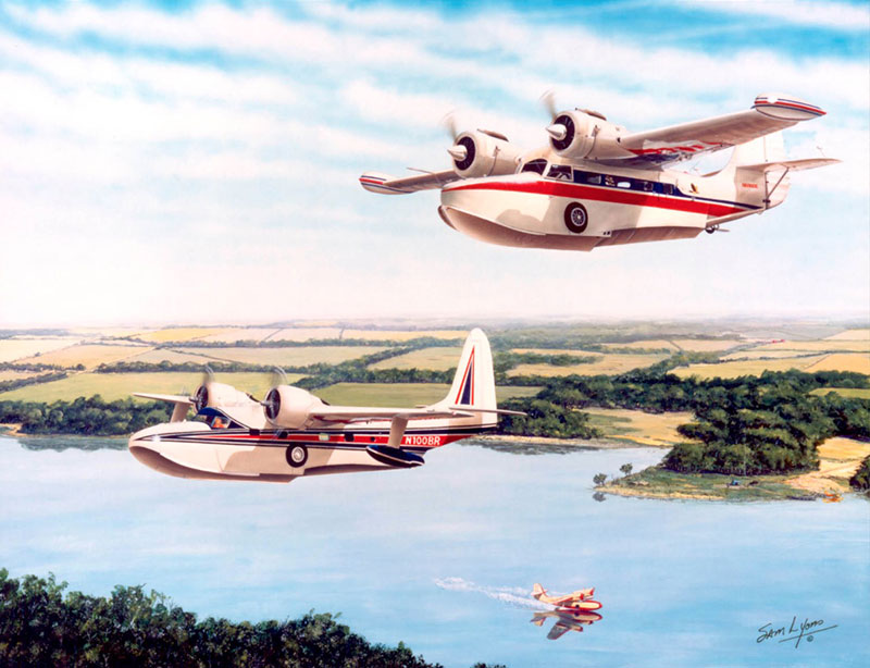 Aviation Art by Sam Lyons, Waterbirds