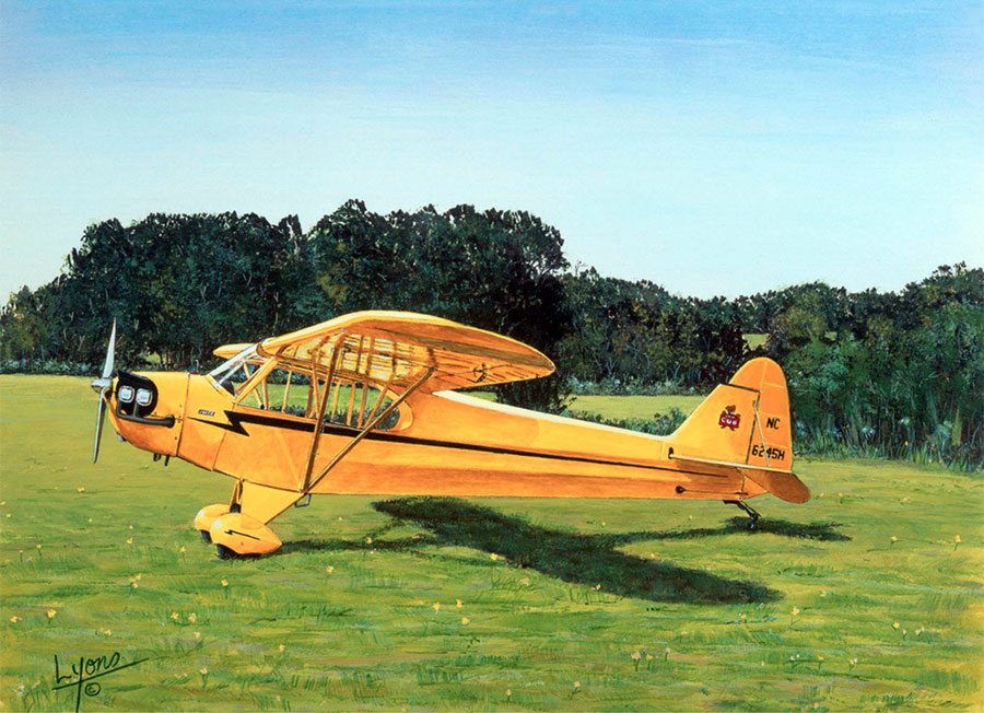 Aviation Art by Sam Lyons, Yellow Beauty